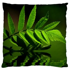 Leaf Large Cushion Case (Single Sided)