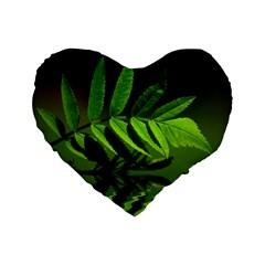 Leaf 16  Premium Heart Shape Cushion