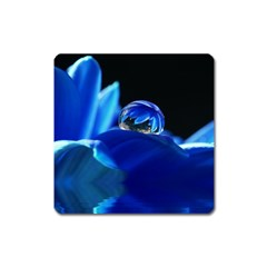 Waterdrop Magnet (Square)
