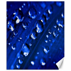 Waterdrops Canvas 20  X 24  (unframed)