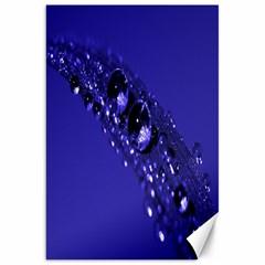 Waterdrops Canvas 20  x 30  (Unframed)