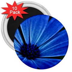 Flower 3  Button Magnet (10 pack)