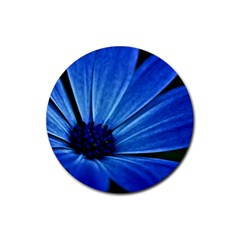 Flower Drink Coasters 4 Pack (round)
