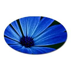 Flower Magnet (oval)