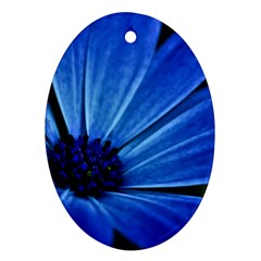 Flower Oval Ornament (Two Sides)