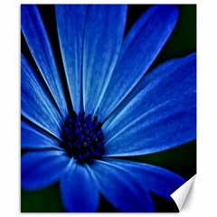Flower Canvas 8  x 10  (Unframed)