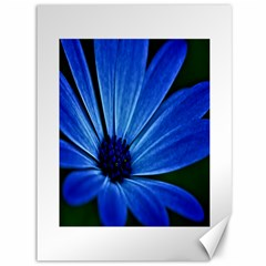Flower Canvas 36  X 48  (unframed)