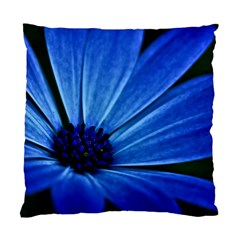 Flower Cushion Case (two Sided)