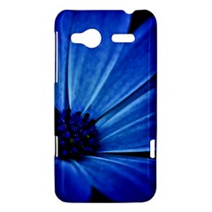 Flower HTC Radar Hardshell Case