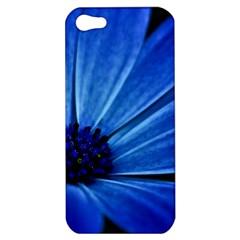 Flower Apple Iphone 5 Hardshell Case