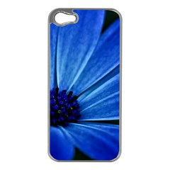Flower Apple Iphone 5 Case (silver)