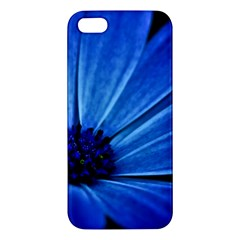 Flower Iphone 5s Premium Hardshell Case