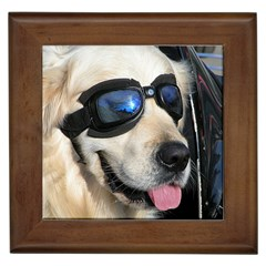 Cool Dog  Framed Ceramic Tile