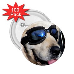 Cool Dog  2.25  Button (100 pack)