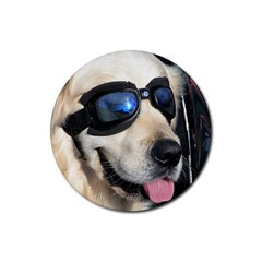 Cool Dog  Drink Coasters 4 Pack (round)