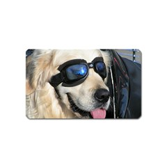 Cool Dog  Magnet (name Card)