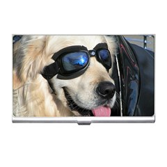 Cool Dog  Business Card Holder