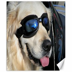 Cool Dog  Canvas 20  X 24  (unframed)