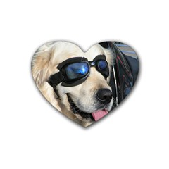 Cool Dog  Drink Coasters 4 Pack (Heart)