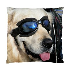 Cool Dog  Cushion Case (Single Sided)