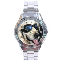 Cool Dog  Stainless Steel Watch (Men s)