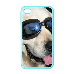Cool Dog  Apple iPhone 4 Case (Color)