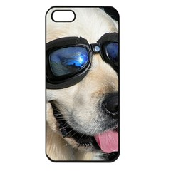 Cool Dog  Apple iPhone 5 Seamless Case (Black)