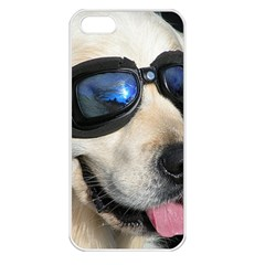 Cool Dog  Apple Iphone 5 Seamless Case (white)