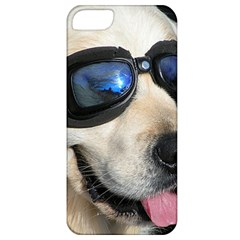 Cool Dog  Apple iPhone 5 Classic Hardshell Case