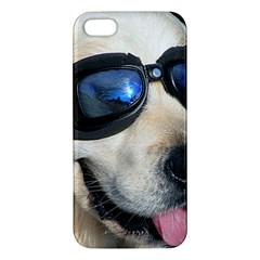 Cool Dog  Iphone 5 Premium Hardshell Case