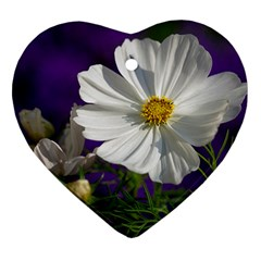 Cosmea   Heart Ornament