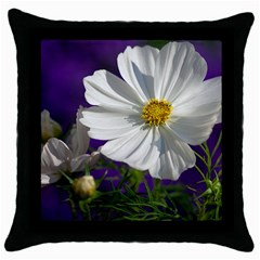 Cosmea   Black Throw Pillow Case