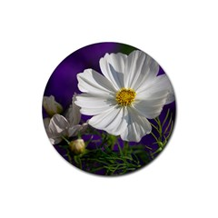 Cosmea   Drink Coasters 4 Pack (Round)