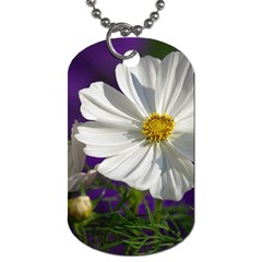 Cosmea   Dog Tag (Two-sided)