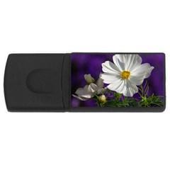 Cosmea   2GB USB Flash Drive (Rectangle)