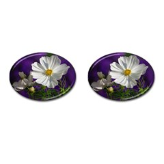 Cosmea   Cufflinks (Oval)