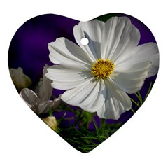 Cosmea   Heart Ornament (Two Sides)