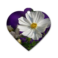 Cosmea   Dog Tag Heart (Two Sided)