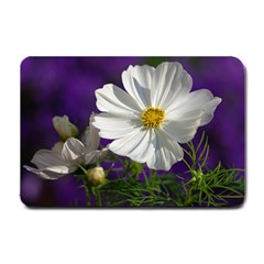 Cosmea   Small Door Mat