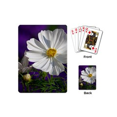 Cosmea   Playing Cards (mini)