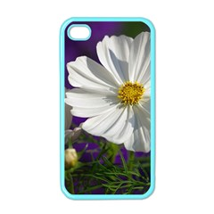 Cosmea   Apple iPhone 4 Case (Color)