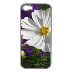 Cosmea   Apple iPhone 5 Case (Silver)