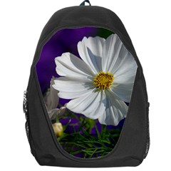 Cosmea   Backpack Bag