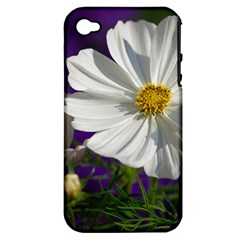 Cosmea   Apple Iphone 4/4s Hardshell Case (pc+silicone)