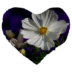 Cosmea   19  Premium Heart Shape Cushion