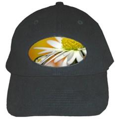 Daisy With Drops Black Baseball Cap