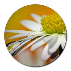 Daisy With Drops 8  Mouse Pad (round)