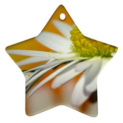 Daisy With Drops Star Ornament