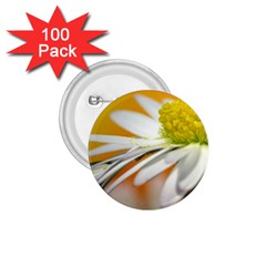 Daisy With Drops 1 75  Button (100 Pack)