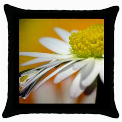 Daisy With Drops Black Throw Pillow Case